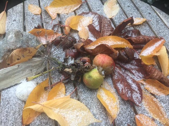 Mellem efterår og vinter, og om mit vinter-retreat ved Ørslev Kloster